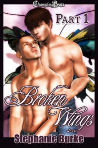 Cover - Broken Wings (Angel Falls 1)