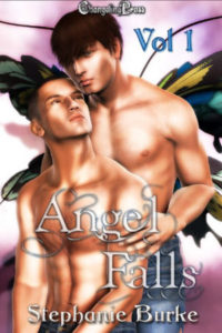 Cover - Angel Falls Vol. 1