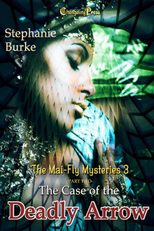 Cover - The Case of the Deadly Arrow Part 2 (Mai-Fly Mysteries 3)